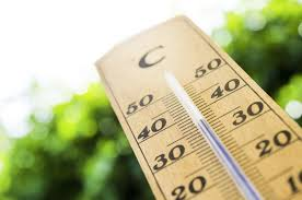 Canicule thermomètre